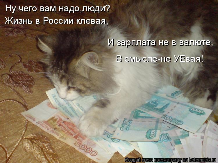 Котоматрица: Ну чего вам надо,люди? Жизнь в России клевая, И зарплата не в валюте, В смысле-не УЕвая!