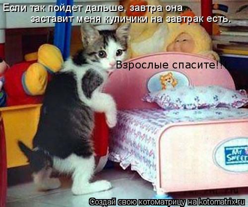 Котоматрица: Если так пойдет дальше, завтра она  заставит меня куличики на завтрак есть. Взрослые спасите!!!