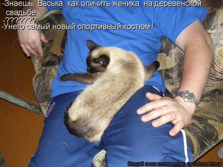 Котоматрица: -Знаешь, Васька, как оличить жениха  на деревенской  свадьбе -??????? -Унего самый новый спортивный костюм !