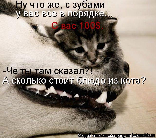 Котоматрица: Ну что же, с зубами  у вас все в порядке... С вас 100$. -Че ты там сказал?! А сколько стоит блюдо из кота?