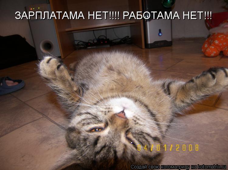 Котоматрица: ЗАРПЛАТАМА НЕТ!!!! РАБОТАМА НЕТ!!!