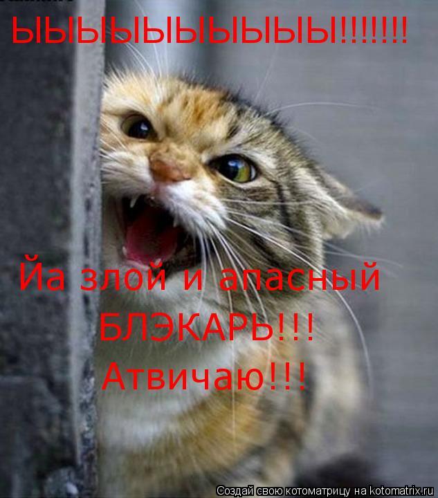 Котоматрица: ЫЫЫЫЫЫЫЫЫЫ!!!!!!! Йа злой и апасный БЛЭКАРЬ!!! Атвичаю!!!