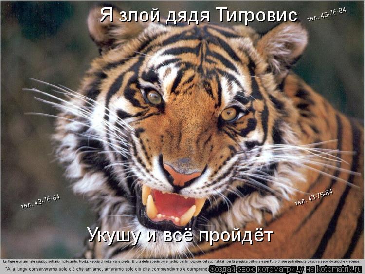 Котоматрица: Я злой дядя Тигровис Укушу и всё пройдёт тел. 43-76-84 тел. 43-76-84 тел. 43-76-84