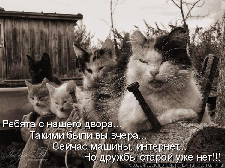 Котоматрица: Ребята с нашего двора... Такими были вы вчера... Сейчас машины, интернет... Но дружбы старой уже нет!!!