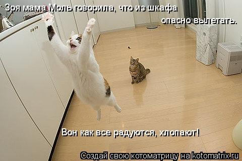 Котоматрица: Зря мама Моль говорила, что из шкафа опасно вылетать.  Вон как все радуются, хлопают!