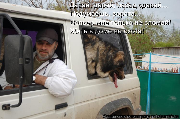 Котоматрица: Давай, давай, назад сдавай... Подумаешь, ворота... Жить в доме не охота! Вольер мне только не сломай!