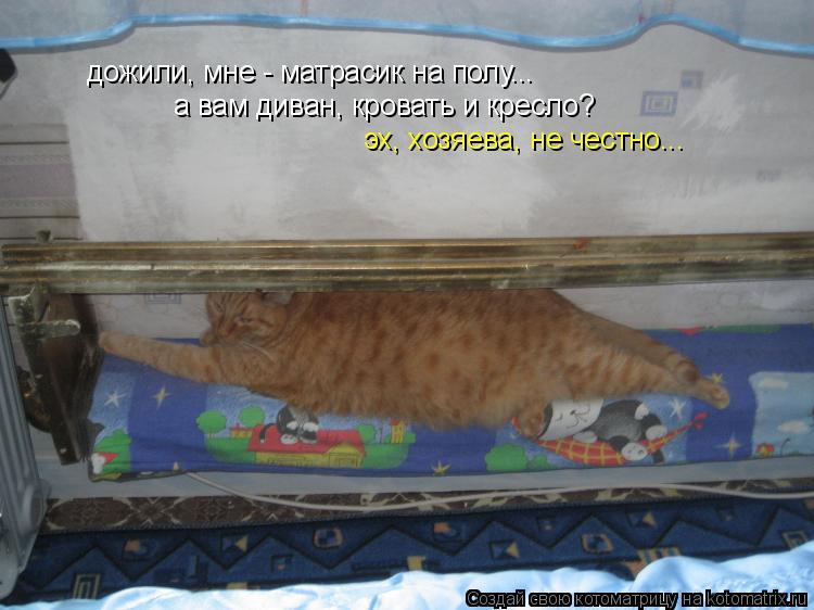 Котоматрица: дожили, мне - матрасик на полу... а вам диван, кровать и кресло? эх, хозяева, не честно...
