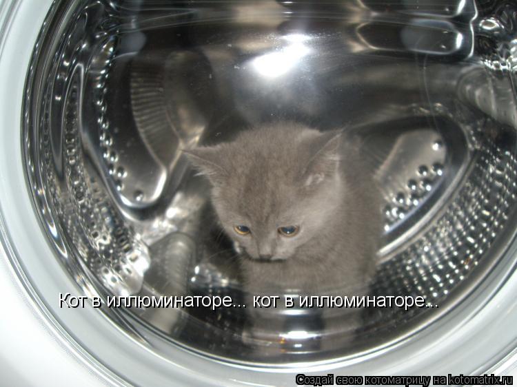 Котоматрица: Кот в иллюминаторе... кот в иллюминаторе...