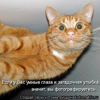 Котоматриця!)))) GK