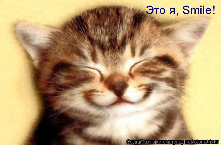 Котоматрица: Это я, Smile!