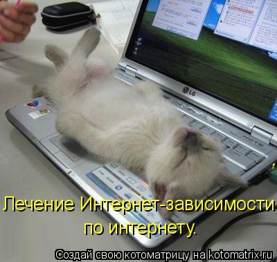 Котоматрица: Лечение Интернет-зависимости по интернету.
