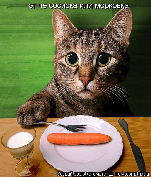 Котоматрица: эт че сосиска или морковка