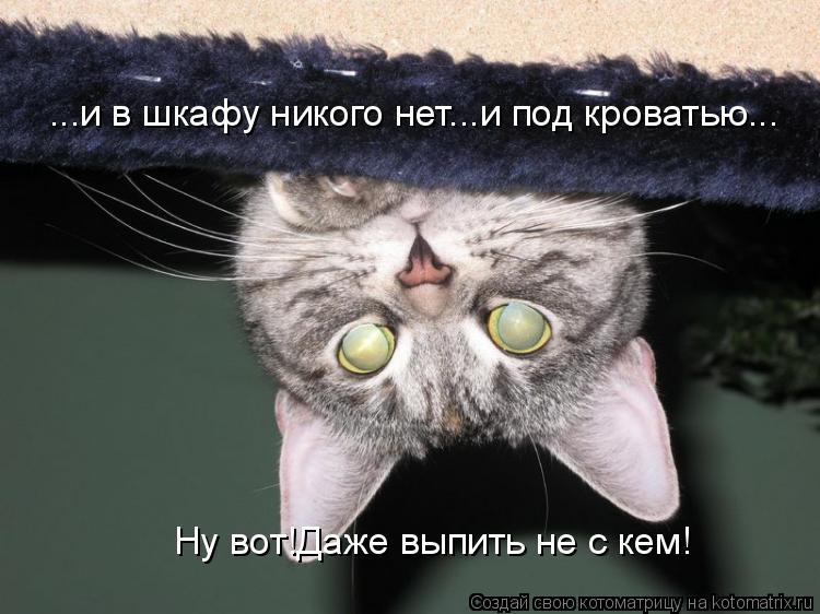 Котоматрица: Ну вот!Даже выпить не с кем! ...и в шкафу никого нет...и под кроватью...