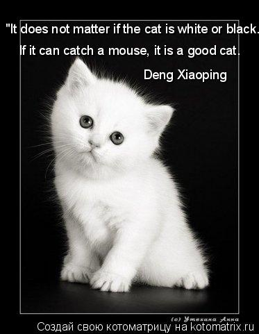 """Котоматрица: """"It does not matter if the cat is white or black.   If it can catch a mouse, it is a good cat. Deng Xiaoping"""