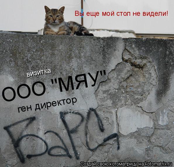 """Котоматрица: ген директор ООО """"МЯУ"""" визитка Вы еще мой стол не видели!"""