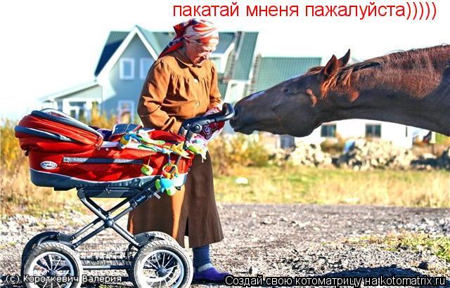Котоматрица: пакатай мненя пажалуйста)))))