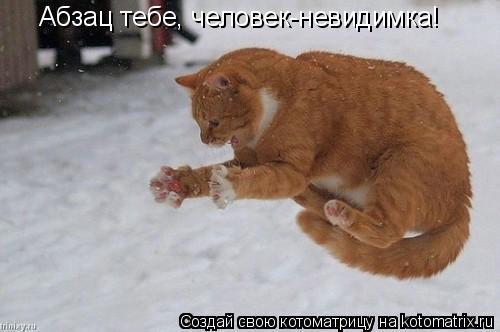 Котоматрица: Абзац тебе, человек-невидимка!