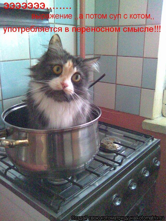 Котоматрица: эээээээ........ выражение ,,а потом суп с котом,, употребляется в переносном смысле!!!