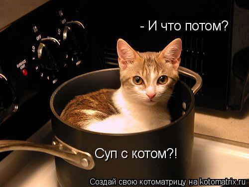 Котоматрица: - И что потом? Суп с котом?!