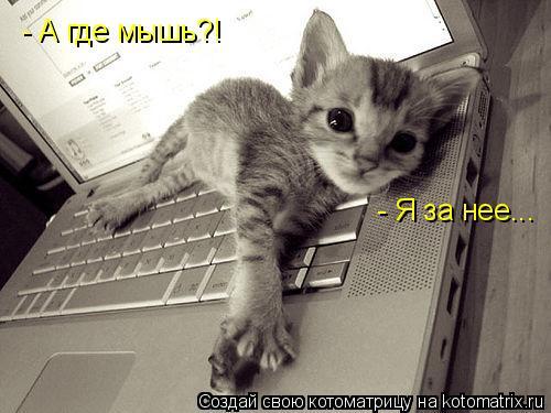 Котоматрица: - Я за нее... - А где мышь?!