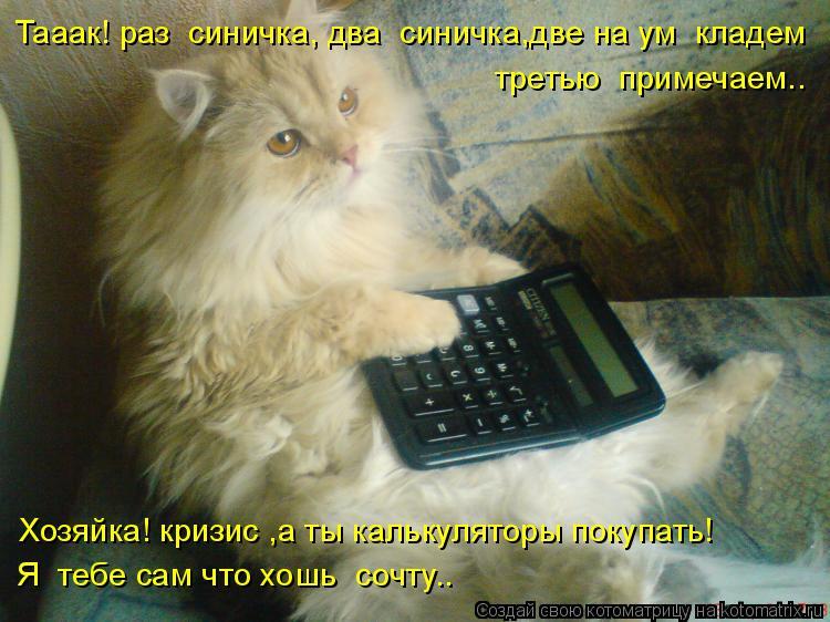 Котоматрица: Тааак! раз  синичка, два  синичка,две на ум  кладем третью  примечаем.. Хозяйка! кризис ,а ты калькуляторы покупать! Я  тебе сам что хошь  сочту..