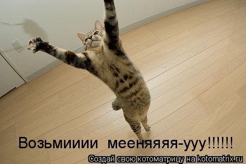 Котоматрица: Возьмииии  мееняяяя-ууу!!!!!!