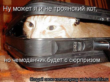 Котоматрица: но чемоданчик будет с сюрпризом. Ну может я и не троянский кот,