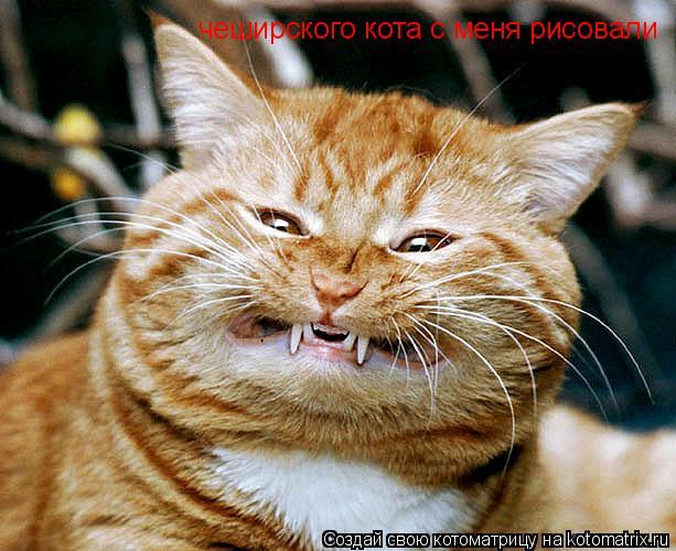 Котоматрица: чеширского кота с меня рисовали
