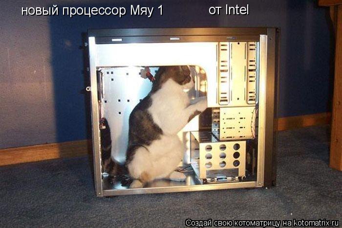 Котоматрица: новый процессор Мяу 1 от Intel