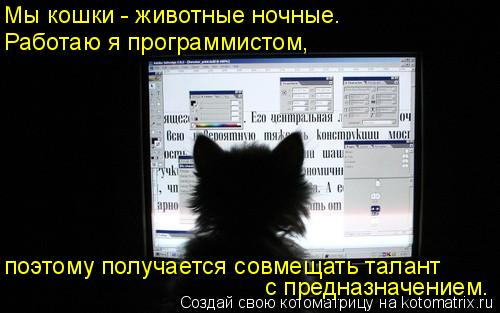 Котоматрица: Мы кошки - животные ночные. поэтому получается совмещать талант с предназначением. Работаю я программистом,