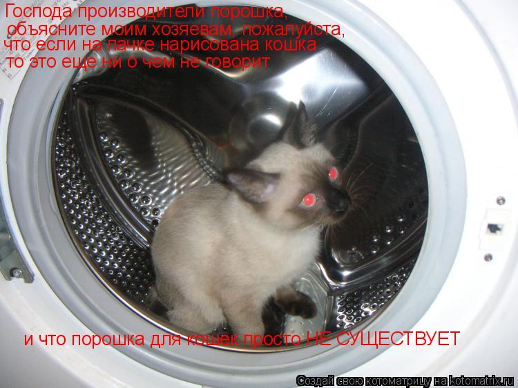 Котоматрица: Господа производители порошка,  объясните моим хозяевам, пожалуйста, и что порошка для кошек просто НЕ СУЩЕСТВУЕТ что если на пачке нарисов