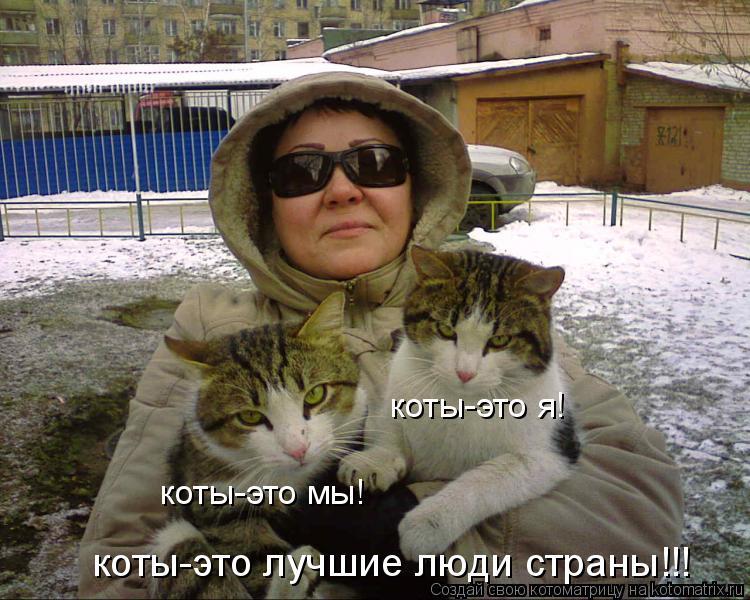 Котоматрица: коты-это я! коты-это мы! коты-это лучшие люди страны!!!