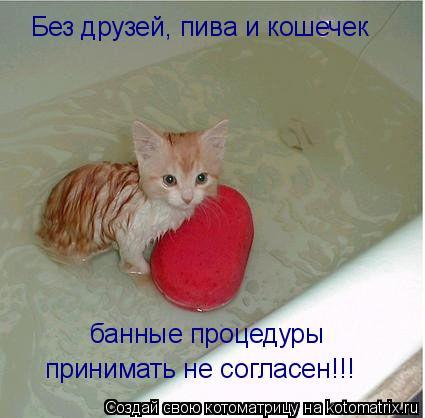 Котоматрица: банные процедуры принимать не согласен!!! Без друзей, пива и кошечек