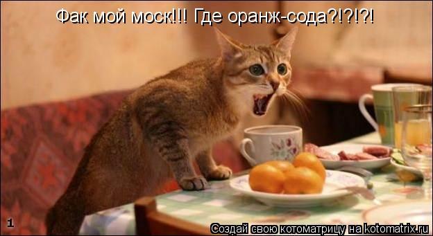 Котоматрица: Фак мой моск!!! Где оранж-сода?!?!?!