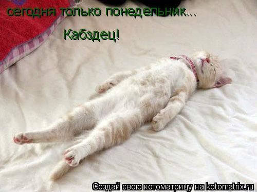 Котоматрица: сегодня только понедельник... Кабздец!
