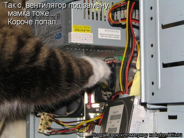 Котоматрица: Так с, вентилятор под замену, мамка тоже... Короче попал...