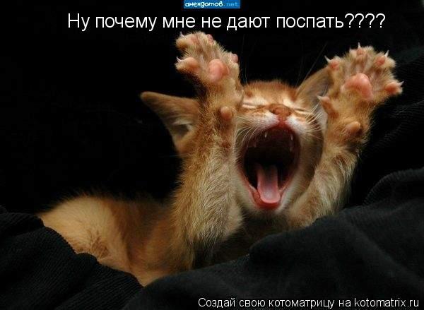 Котоматрица: Ну почему мне не дают поспать????