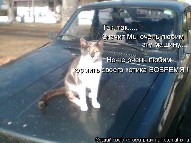 Котоматрица: Так, так..... Значит Мы очень любим  эту машину.... Но не очень любим кормить своего котика ВОВРЕМЯ !