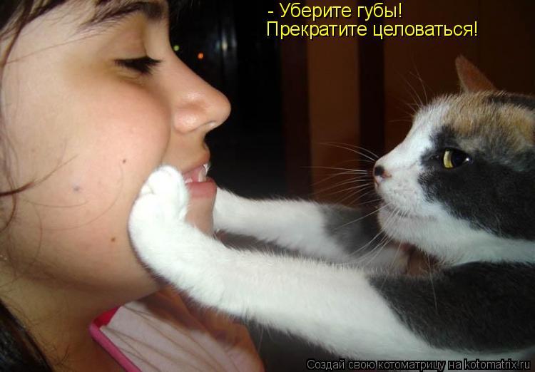 Котоматрица: - Уберите губы!  Прекратите целоваться!