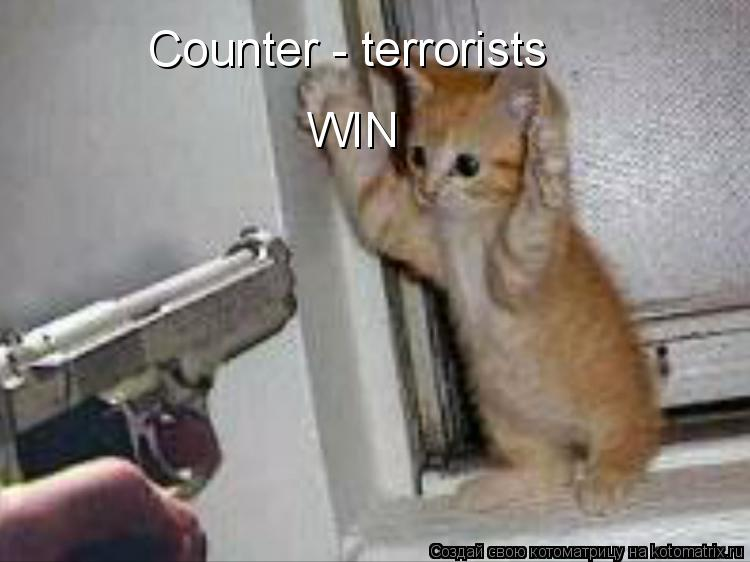 Котоматрица: Counter - terrorists WIN