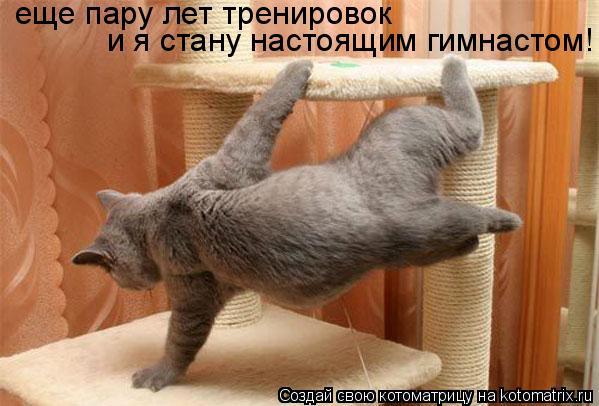 Котоматрица: и я стану настоящим гимнастом! еще пару лет тренировок