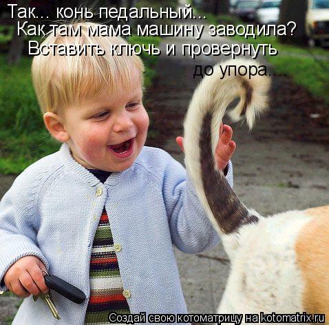 Котоматрица: Так... конь педальный...  Как там мама машину заводила? Вставить ключь и провернуть до упора....