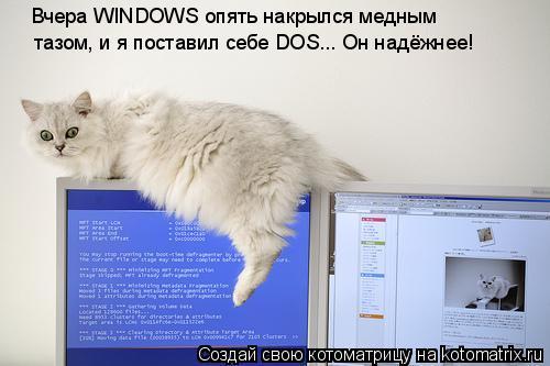 Котоматрица: Вчера WINDOWS опять накрылся медным тазом, и я поставил себе DOS... Он надёжнее!