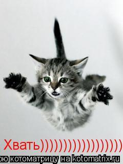 Котоматрица: Хвать)))))))))))))))))))))))))))))))))))))))))))))))))))))))))))))))