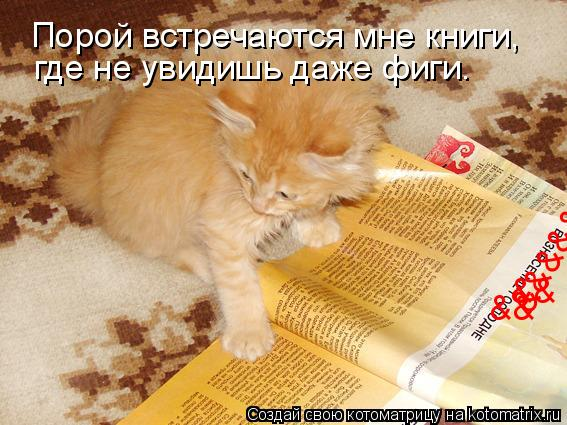 Котоматрица: Порой встречаются мне книги, && && &&&&& где не увидишь даже фиги.