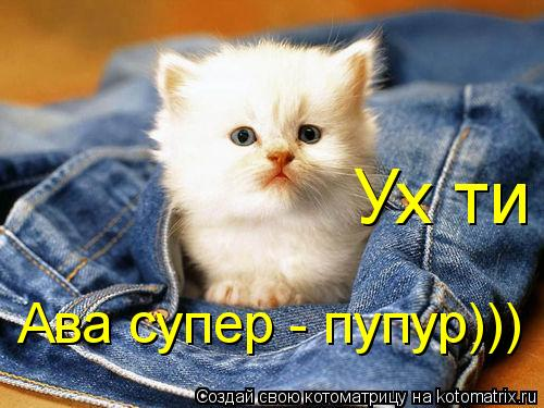 Котоматрица: Ух ти Ава супер - пупур)))