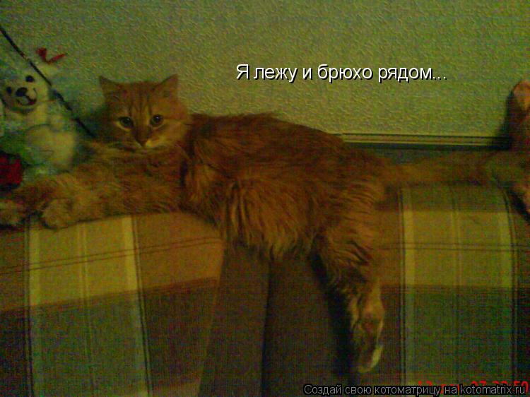 Котоматрица: Я лежу и брюхо рядом...