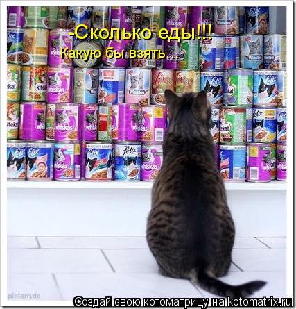 Котоматрица: -Сколько еды!!! Какую бы взять...