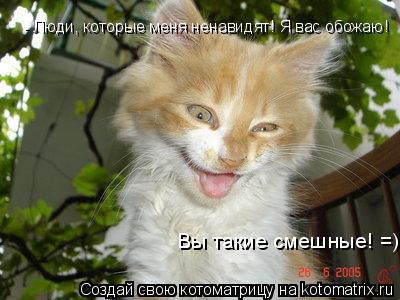 Котоматрица: Вы такие смешные! =) Вы такие смешные! =) - Люди, которые меня ненавидят! Я вас обожаю! - Люди, которые меня ненавидят! Я вас обожаю! - Люди, которы