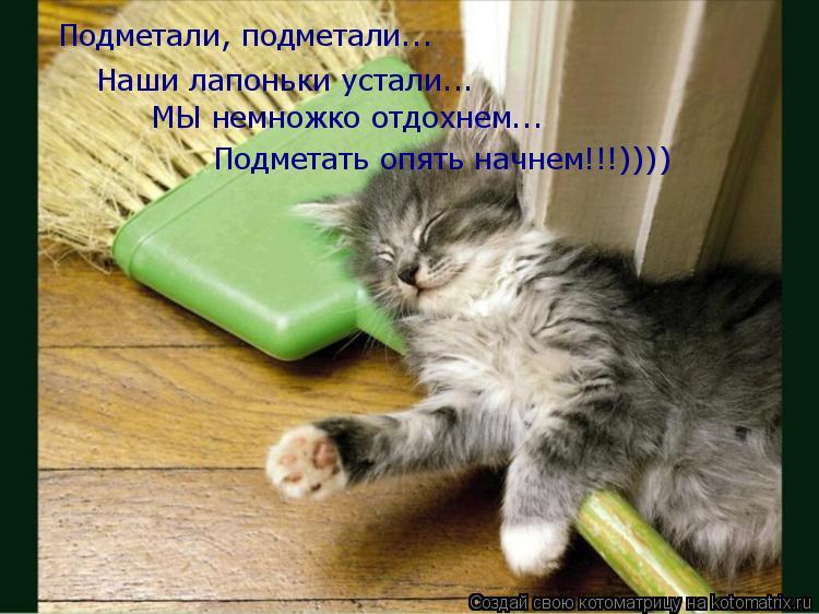 Котоматрица: Подметали, подметали... Наши лапоньки устали... МЫ немножко отдохнем... Подметать опять начнем!!!))))